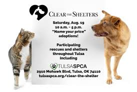 the shelter clear the shelter tulsa spcatulsa spca