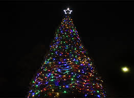 hospice tree of lights thru jan 1