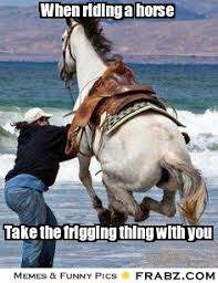 Horse Riding Meme - oh you rode a horse once page 77 the horse forum