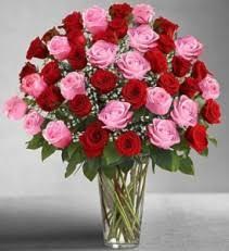 luxury flowers luxury flowers prange s florist gainesville fl wow flowers