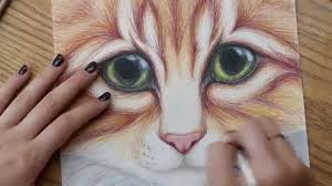 kitty cat with big eyes colored pencil drawing full version