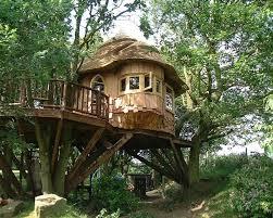 23 best treehouse ideas images on pinterest treehouses