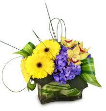 newport florist brightest light by newport florist nf258 in newport ca