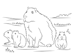 capybara cute babies coloring free printable coloring