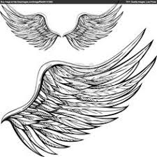 wings sketches royalty free vector of cartoon wings scketches