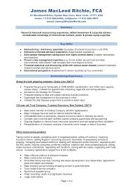 sle resume for business analysts duties of executor of trust james ritchie full cv 010909