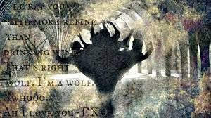 wallpaper exo wolf 88 exo wolf by katew49 on deviantart