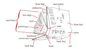 99 ranger wiring diagram 99 free wiring diagrams u2013 readingrat net