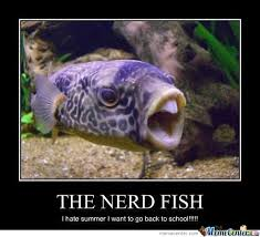 Fish In The Sea Meme - weekend aquarium meme roundup aquanerd aquarium pinterest