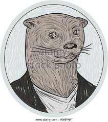 otter drawing stock photos u0026 otter drawing stock images alamy