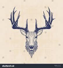 Deer Head by Deer Head Vintage Hand Drawn Illustration Stock Vector 298293542