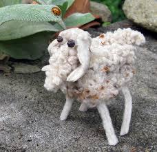 lambs ear love fairegarden