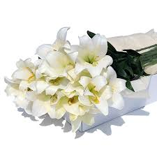 white lillies flower box white lilies delivery in germany by giftsforeurope