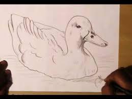 draw simple duck yzarts yzarts