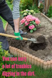 124 best gardening quotes images on pinterest gardening quotes