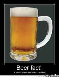 Beer Goggles Meme - 60 very hilarious beer meme stock golfian com