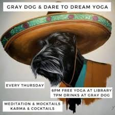 first light federal credit union el paso gray dog yoga