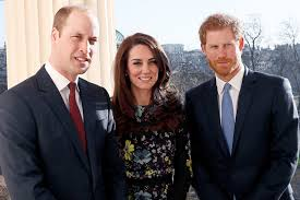 watch prince harry prince william and kate middleton speak for