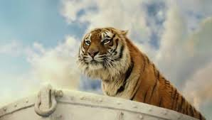 life of pi tiger trainer michael hackenberger charged with animal