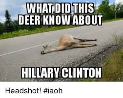 Funny Deer Memes - what did this deer know about hillary clinton headshot iaoh