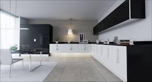 modern kitchen elkhart elegant modern kitchen images taste