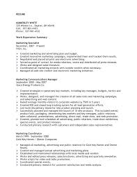 Promotion Resume Sample by Professional Marketing Resume Professional Marketing