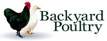 Backyard Chickens Magazine Backyard Poultry Information Centre Australia