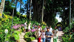 Singapore Botanic Gardens Location Todayonline Singapore Botanic Gardens Unesco World Heritage