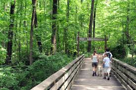 The Canopy Ellicott City by Maryland Family U0027s Summer Camp Guide 2015 Baltimore Sun