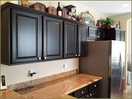Staining Oak Kitchen Cabinets Alluring 10 Painting Oak Kitchen Cabinets Espresso Decorating