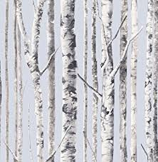 mayflower wallpaper birch noir black blue white trees forest
