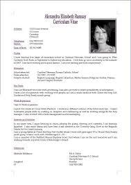Software Resume Cv Or Resume Resume For Your Job Application