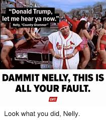 Grammar Meme Generator - donald trump let me hear ya now nelly country grammar all your