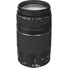 home depot black friday 2009 canon ef 75 300mm f 4 5 6 iii telephoto zoom lens 6473a003 the