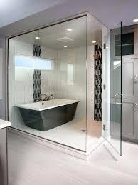 Modern Bathroom Tub Tub Inside Shower Impressive Tub Inside Shower Pertaining To Stand