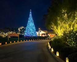 san antonio tree lighting 2017 san diego coastal christmas lights