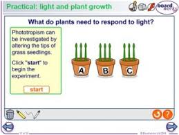 gcse science resources for interactive whiteboards and projectors