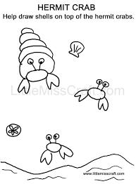 crafts sea creatures hermit crab doodle coloring page