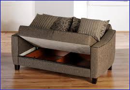 Bobs Sleeper Sofa Sofa Breathtaking Loveseat Sofa Bed With Storage Innovative Love
