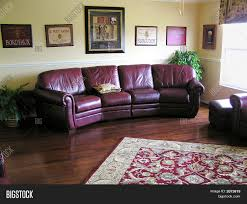 livingroom burgundy sofa image u0026 photo bigstock