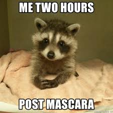 Mascara Meme - me two hours post mascara head doctor raccoon meme generator