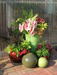 Plant Combination Ideas For Container Gardens - 361 best gorgeous container combinations images on pinterest