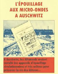 vérité sur les chambres à gaz la vérité sur les cs allemands l épouillage aux micro ondes à
