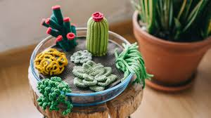 succelents how to crochet a terrarium including 7 different succulents