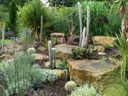 cactus garden ideas 96 with cactus garden ideas home