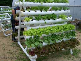 Planter Garden Ideas Diy Pvc Gardening Ideas And Projects