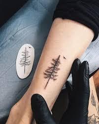 instagram analytics pine tree pine and crescents