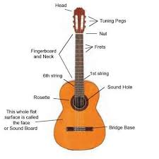diagram of the parts of a classical guitar