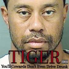 Tiger Woods Meme - tiger tiger woods mugshot know your meme