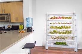 Indoor Vegetable Garden Kit by Harvest Fresh Veggies All Year Round With The Energy Efficient